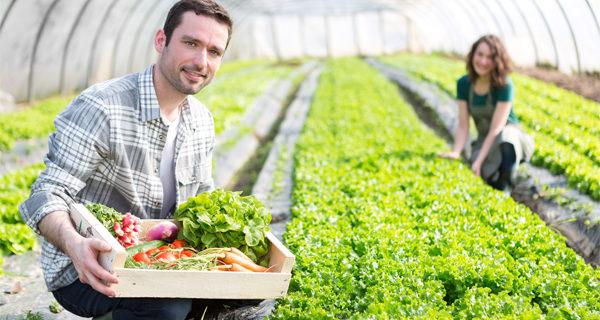 Innovazione Giovani Agricoltori Professionali